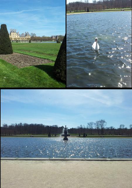 Promenade ressourçante dans les jardins du Château de Fontainebleau