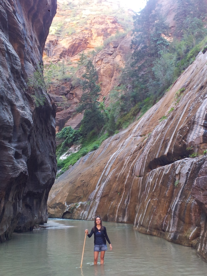 Zion Canyon2