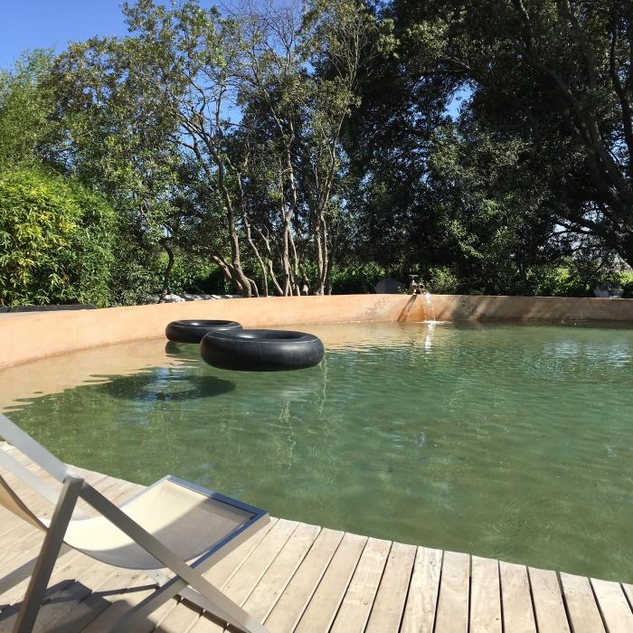Babylonstoren_natural_pool_blog_voyage_ailleurs_is_better