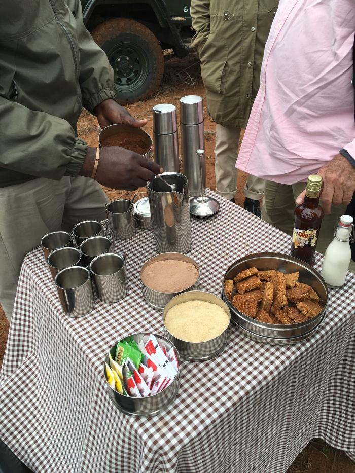safari_morning_break_blog_voyage_ailleurs_is_better